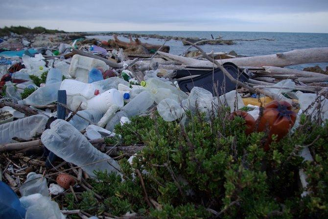 Plastica spiaggiata